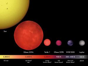 En esta comparativa también aparece Teide 1, la primera enana marrón descubierta.
