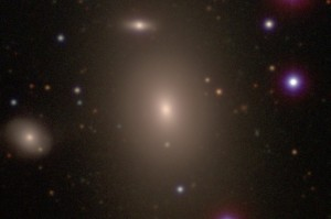 La galaxia NGC 1600 y sus compañeras. Crédito: Carnegie-Irvine Galaxy Survey
