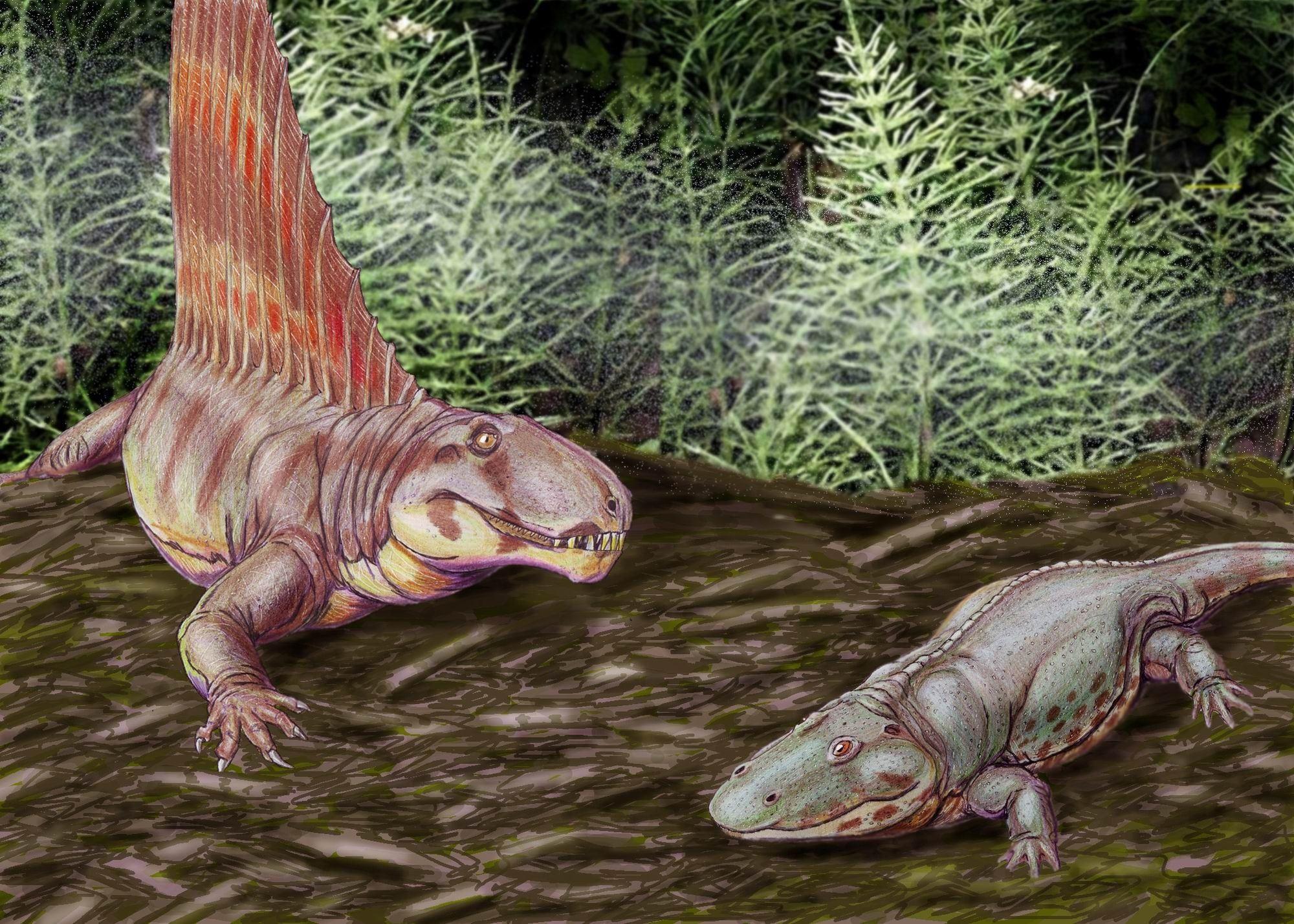 La Gran Mortandad: ¿Qué provocó la gran extinción?