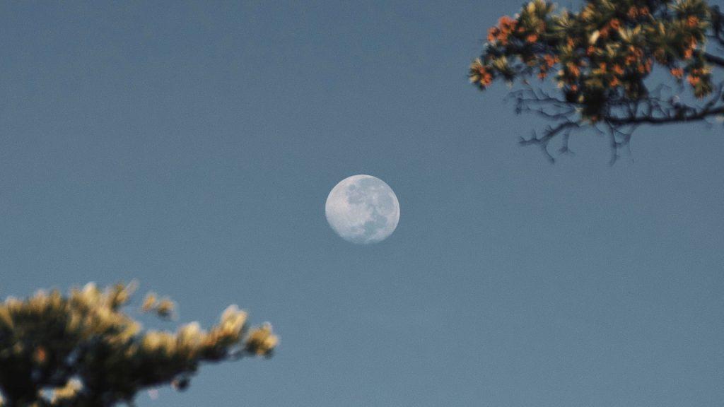 Calendario astronómico de mayo de 2021: La luna llena de este mes es la luna de las flores.